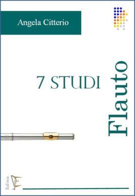 7 studi citterio