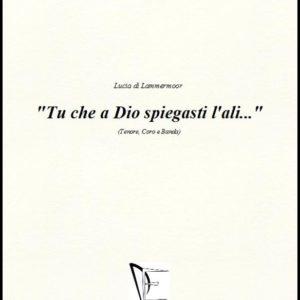 TU CHE A DIO SPIEGASTI L'ALI... edizioni_eufonia